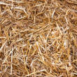 Haystack — Stock Photo #39199029