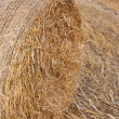 Haystack — Stock Photo #39199085