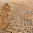 Haystack — Stock Photo #39199173