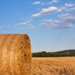 Haystack — Stock Photo #39199205