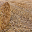 Haystack — Stock Photo #39199215