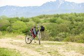 Bicicletta — Foto Stock