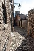 Middeleeuws dorp — Stockfoto