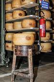 Indústria de laticínios — Foto Stock