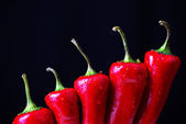 Chilli peppers — Photo