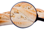 Bread under inspection — Stock Photo