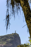 Christ Redeemer — Stock Photo