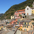 Stock Photo: Cinque Terre village