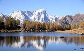 Mont blanc horská krajina — Stock fotografie