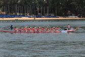 Discovery Bay dragon boat race, Hong Kong — Stock Photo