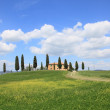 Spring landscape in Tuscany, Italy — Stock Photo