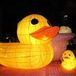 Chinese lanterns with the shape of ducks — Stock Photo