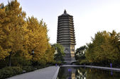 Linglong tower — Stock Photo