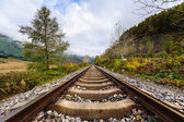 Linha férrea — Fotografia Stock