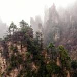Foggy Zhangjiajie — Stock Photo