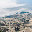 Yuan Yang Rice Terraces — Stock Photo