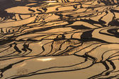Yuan Yang Rice Terraces — Stock Photo