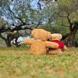 Two teddy bears sitting in garden. Concept about love and relationship. — Stock Photo #38862087