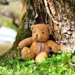 Stock Photo: Loneliness Teddy Bear sitting in garden. Concept about loneliness.