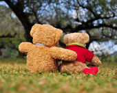 Two teddy bears sitting in the garden with love. Concept about love. — Stock Photo