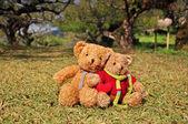 Deux ours en peluche assis dans le jardin d'amour. — Photo