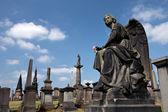 Glasgow Necropolis — Stockfoto