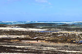 Fuerteventura — Stok fotoğraf