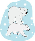 Polar Bears — Stock Vector