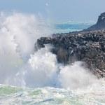 Waves crashing onto a rocky coastline — Stock Photo #38605939