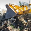 Foto Stock: Excavator clearing undergrowth