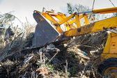 Excavator clearing undergrowth — Stock Photo