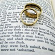 Stock Photo: Marriage Vows and Rings