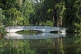 Bridge Over Pond — Stock Photo
