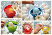 Collage of Coloring Easter Eggs — Stock Photo
