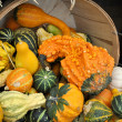 Gourds — Stock Photo #39521437