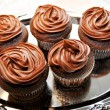 Stock Photo: Chocolate Frosted Cupcakes