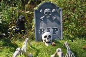 Skeleton in a Garveyard — Stock Photo