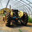 Stock Photo: Tractor in Greenhouse