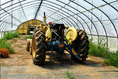 Tractor in a Greenhouse — Stock Photo