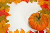 Autumn Border of Leaves and a Pumpkin — Stock Photo