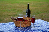 Picnic Wine — Stock Photo