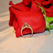 Stock Photo: Rose Ring