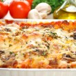Fresh Ingredients Behind Pof Lasagna — Stock Photo #41997453