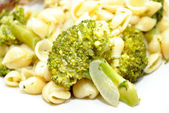 Fresh Broccoli with Onion and Shell Pasta — Stock Photo