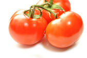 Perfecte rode tomaten geïsoleerd over Wit — Stockfoto