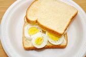 Whole Egg Sandwich for Lunch or Breakfast — Stock Photo