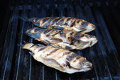 Fresh Pink Snapper Cooked on a Grill — Stock Photo
