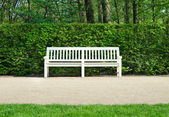 Wooden benches in Lazienki park — Stock Photo