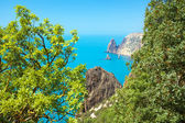 View of the sea coast from the mountain — Stock Photo