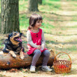 Happy little girl with dog sitting on the snag in the forest — Stock Photo #38731285
